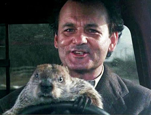 All well at home and work? Replay of Groundhog's Day continues in NYC
